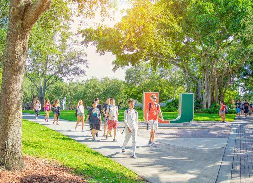 University de Miami